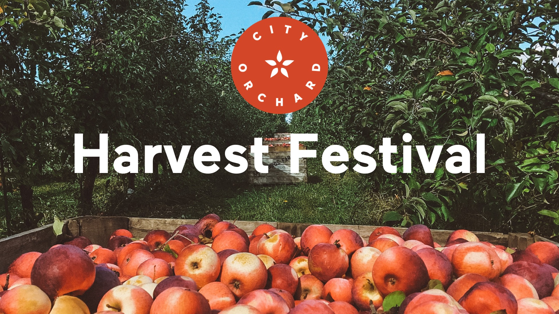 Harvest Festival at City Orchard